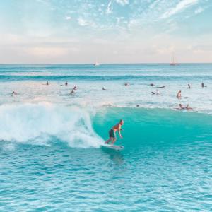 Surfers enjoying waves