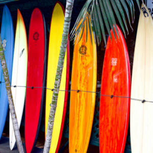 Surf boards for free use for the surfers